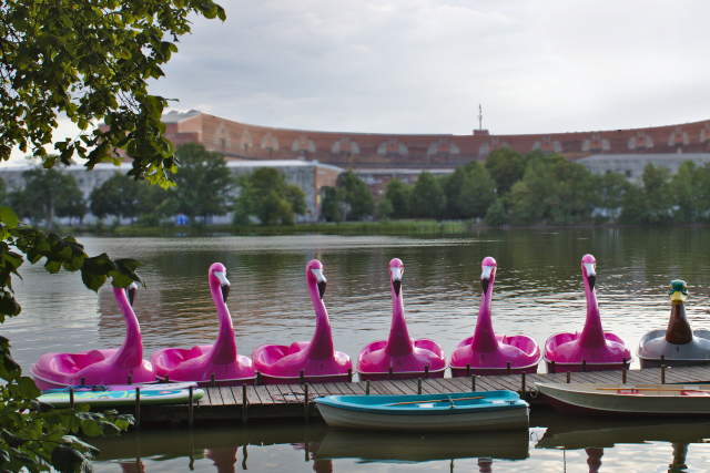 nürnberg-dutzendteich-tretboot-flamingo